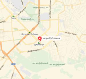 Станция метро Дубравная